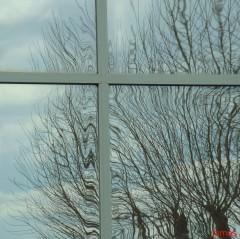 vitres.jpg