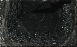 DSCF0702 cendre noire.JPG