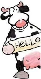 cow20.jpg