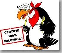 calomnie 100 100.jpg