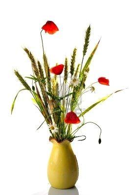 bouquet-de-fleurs-sauvages-avec-bl--de-pavot.jpg